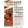 Kokorské Gulášfest, 21kB